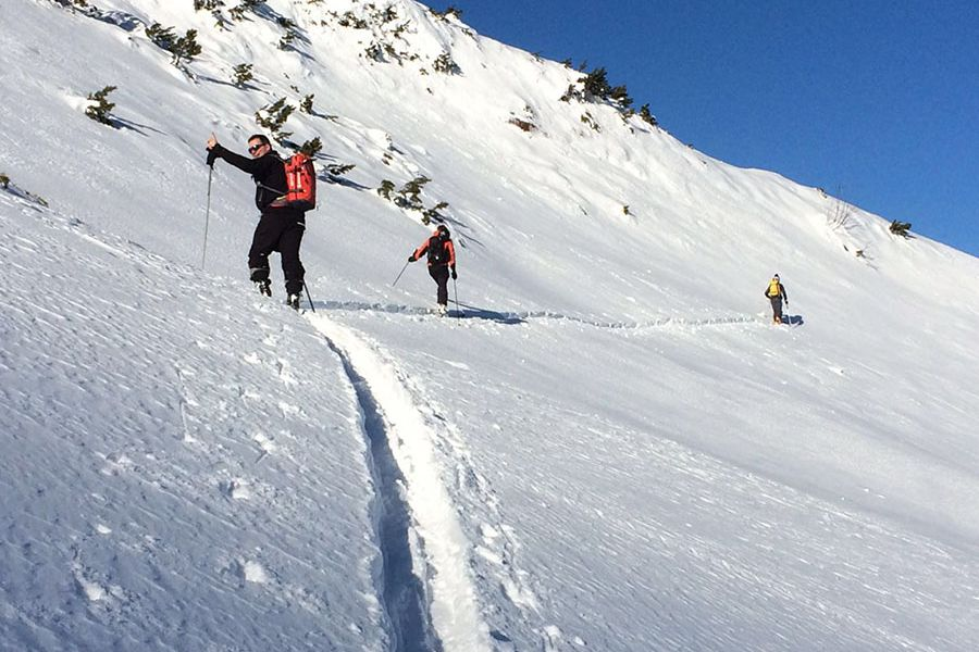 Go on skiing tours